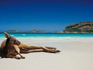 Vous voulez vous relaxer sur les plus belles plages d'Australie