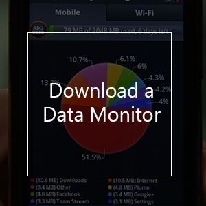 Download a data monitor to check your data roaming usage