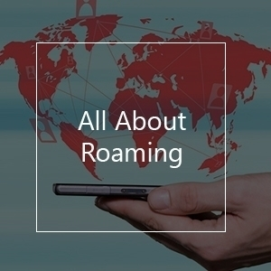 roaming details question answer