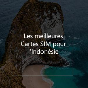 Les 8 meilleures cartes SIM prépayées pour l'Indonésie en 2021